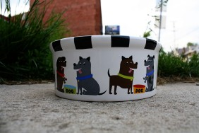 A lot of the shops by our house leave out community dog bowls