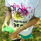 Fun Run: Color Palooza.
