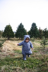 Tree Farm (42 of 83)